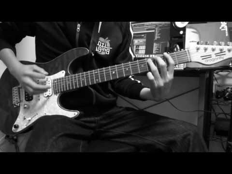 fact / reborn Guitar Cover