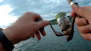 Рыбалка на поппер и цирковая щука