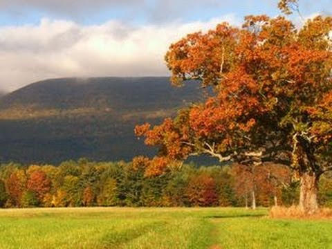 Nature: Catskills
