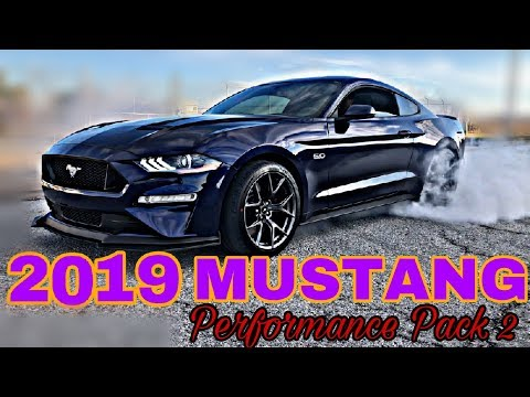 Mustang GT Performance Pack : LINE LOCK BURNOUT