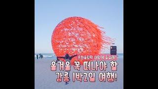 뻔한 강릉 말고, 요즘 핫한 강릉 1박2일 다녀왔다! (feat. 문화올림픽)