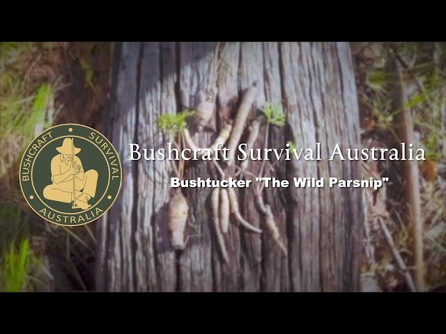 Bushcraft Survival Australia - Bushtucker