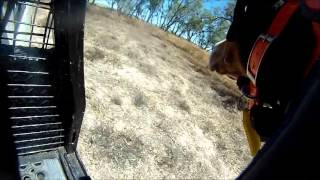 HOUND CAM - PIG HUNTING 2014