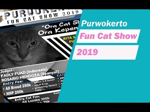 Purwokerto fun cat show 2019