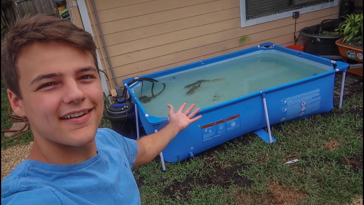 new-backyard-pool-pond-for-pacu