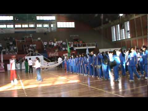 Jogos Panamericanos Nikkei 2011
