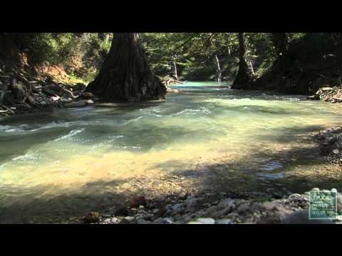 PBS Show March 8-14, 2015, #2321 - Texas Parks and Wildlife [Official]