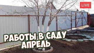 видео Основные работы в саду и на огороде