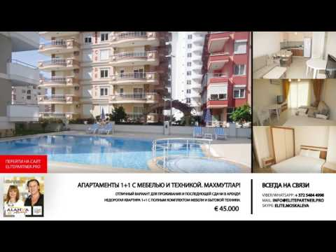 Недвижимость в Турции € 45 000 1+1 Махмутлар Аланья - ElitePartner.Pro Elena Moskalova