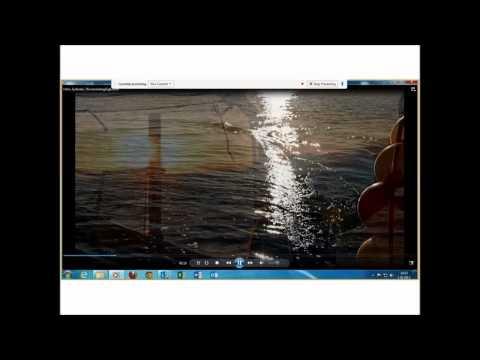 The light trawl by Halla Jonsdóttir