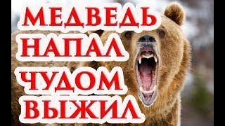 Раненый охотник месяц жил в берлоге с медведем и выжил,The hunter lived with the bear and survived