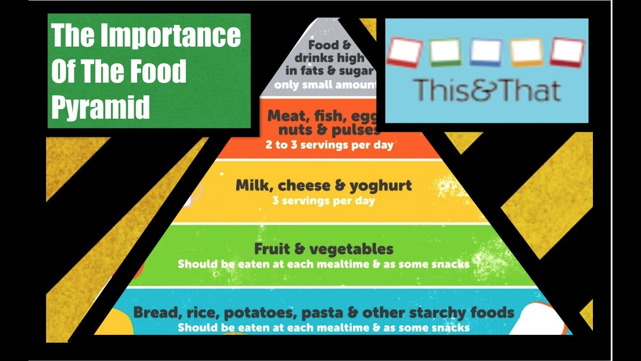 the importance of the food pyramid That means it's more important than ever to choose foods that give you the best   you might remember the food pyramid, but the usda recently unveiled a.