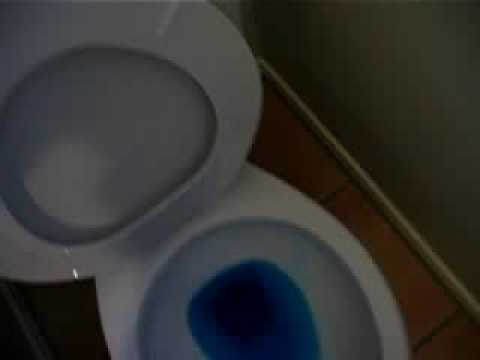 Niagara Flapperless toilet - YouTube