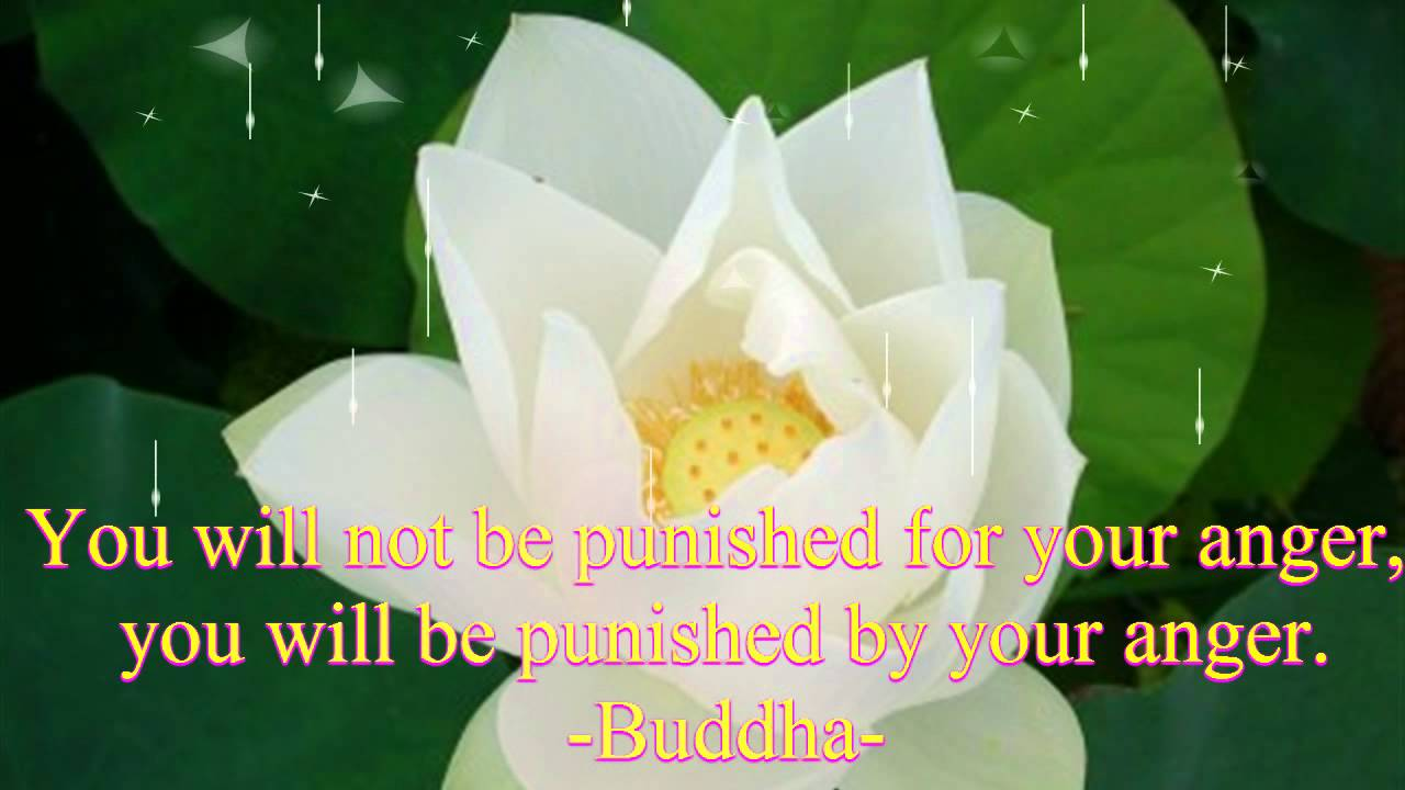 Buddhas Quotes Happiness Never Decreases By Being Shared Youtube