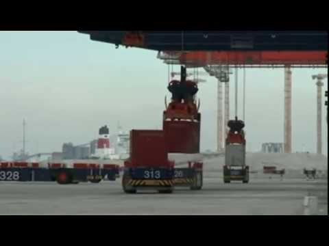 Sea Freight Shipping Line Export Import Cargo Indonesia Network - MSA Kargo