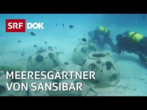 Die Meeresgärtner von Sansibar – Christian Vaterlaus und Connie Sacchi