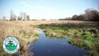 Introducing the Taylors Bridge Roberts Farm