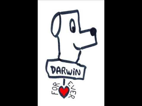 MATHILDE et NICOLAS CREATEURS DARWIN FOREVER Radio
