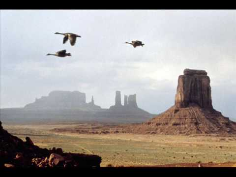 Winged Migration - Tambour Battant