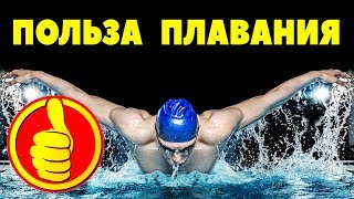 ПОЛЬЗА ПЛАВАНИЯ / 5 причин начать плавать / чем полезно плавание для ЗДОРОВЬЯ