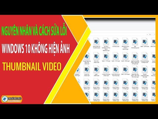 Nguyên Nhân và Cách Sửa Lỗi Windows 10 Không Hiện Ảnh Thumbnail Video 🔴 Lương Minh Triết