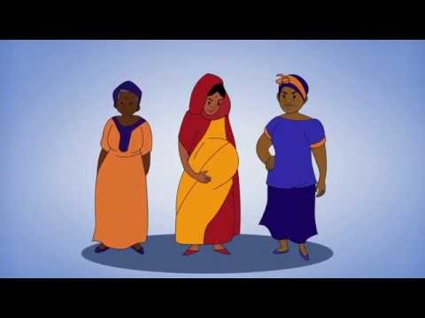 Innovations in Evaluation – A Brief Animation of the MLE Project