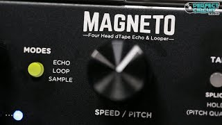 Strymon Magneto Eurorack 4 Head Tape Delay & Spring Reverb