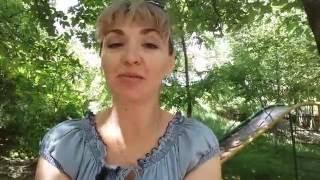 Почему решили переехать и почему в Ставрополь?