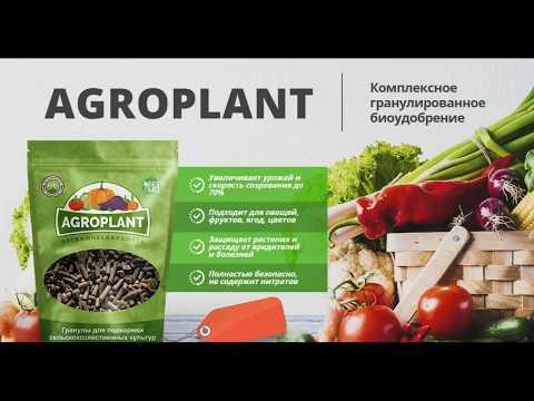 Вопрос: AGROPLANT (биоудобрение ). Какие отзывы?