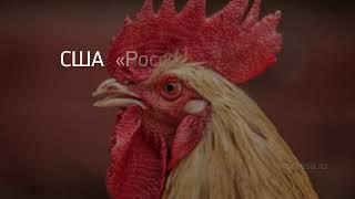 """Заголовок дня: """"ИХА тест на коронавирус"""" и другие важные новости за 2021-01-11"""