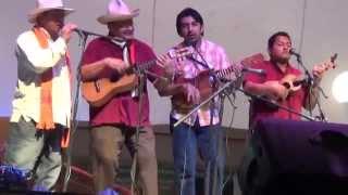 Chicolin y Son Dos familias en el XXV festival Brisas del Sotavento