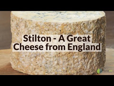 Stilton - A Great Cheese from England