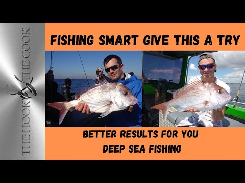 Shallow Reef Fishing | The Hook and The Cook