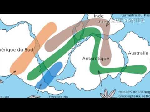 Continental drift theory alfred wegener | মহীসঞ্চরন মতবাদ