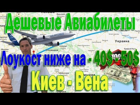 Авиабилеты из Киева в Вену Дешевле на 40$ долларов с Лоукостом LaudaMotion.