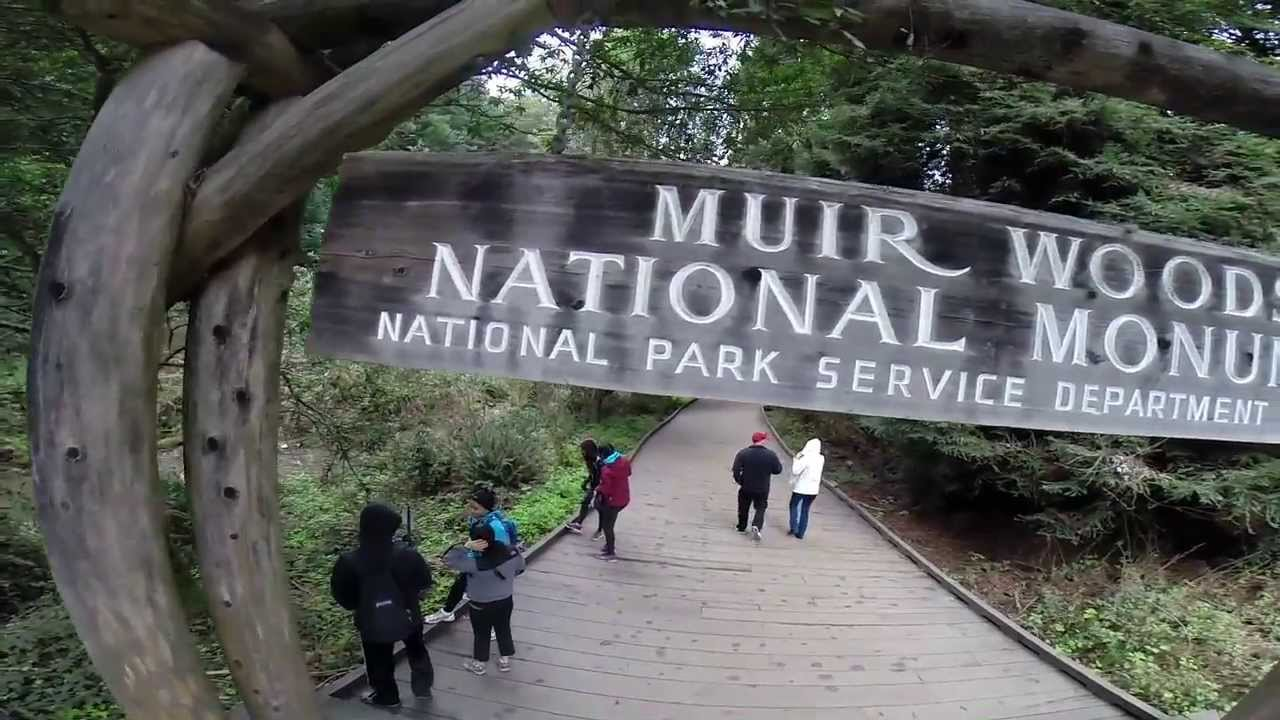Muir Woods To Stinson Beach Hike With Gopro