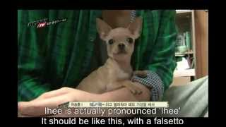 Baixar - Winner S Seunghoon And His Dog Ihee S Love Story Grátis