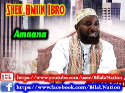 Download Amaana By Shek Amiin Ibro