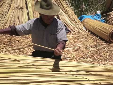 Uros man sorting totora reeds in traditional manner, Lake Titicaca, Peru