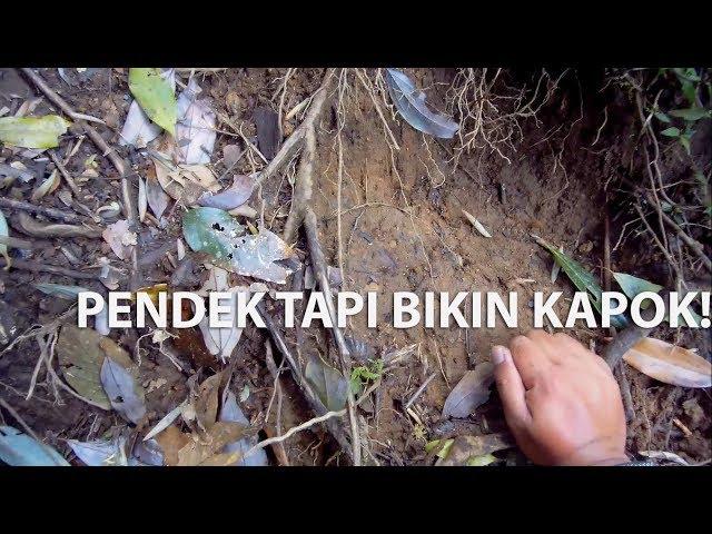Ekspedisi Gunung Bukit Tunggul, Lembang | Gitup Git 2 Pro | DJI Spark