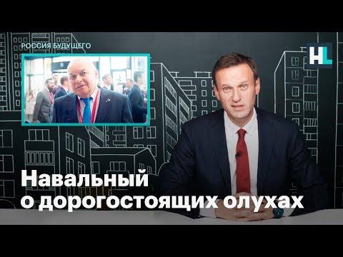 Навальный о дорогостоящих олухах
