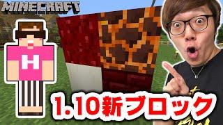 【マインクラフト】1.10の新ブロックで色々遊んでみた!マグマブロックがすごい!【ヒカキンのマイクラ実況 Part176】【ヒカクラ】 thumbnail