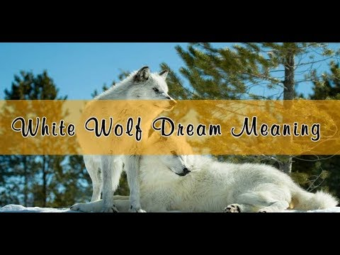 White Wolf Dream Meaning & Interpretation