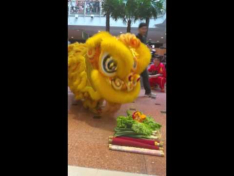 Xincheng Twin Lions Opening @ Jurong Point