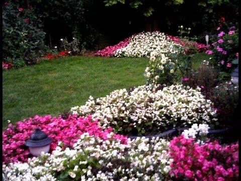 Hobi Bahçesi - Bahçe Düzenleme, Bahçe Bakımı 1. Bölüm