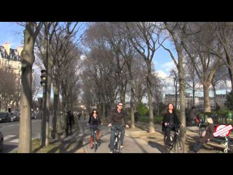 holland-bikes-tours-and-rentals-|-hollandbikes.com