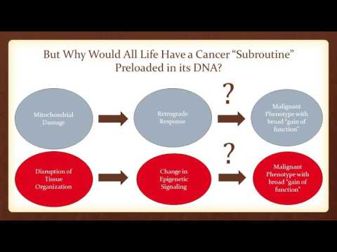 Travis Christofferson, MS -- Cancer 2.0: A Paradigm Shift