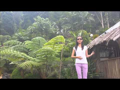 Bago City, Negros Occidental Destination Marketing