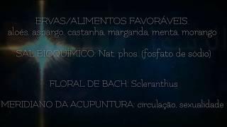 ASTROLOGIA MÉDICA para o signo de LIBRA