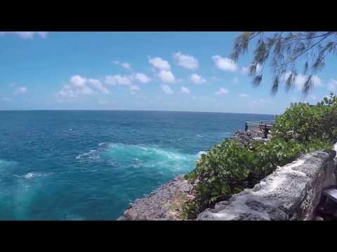 Barbados - Animal Flower Cave - St. Lucy Parish - 2017